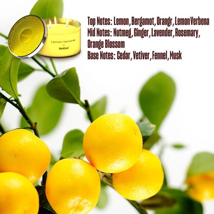 04 2 Bekind Large Jar Scented Candles - 14oz (Lemon Verbena)